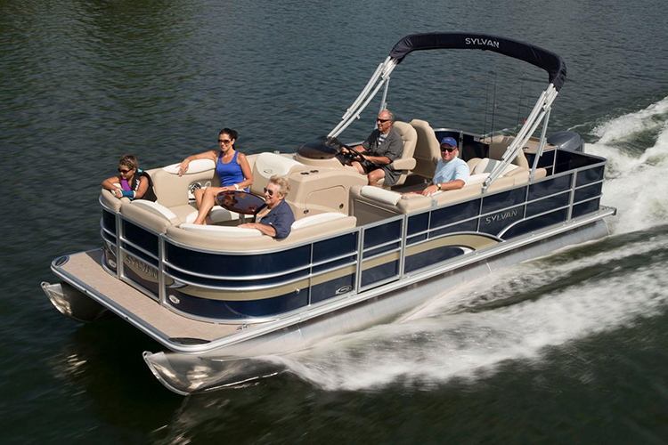Video Review: Sylvan Mirage 8522 Party Fish