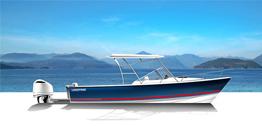 2021 Limestone 290CD Day Boat
